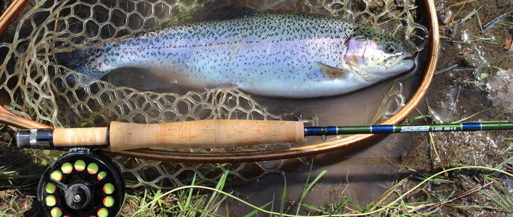 Reasons To Build & Fish With A Custom Fishing Rod